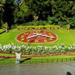 reloj_de_flores